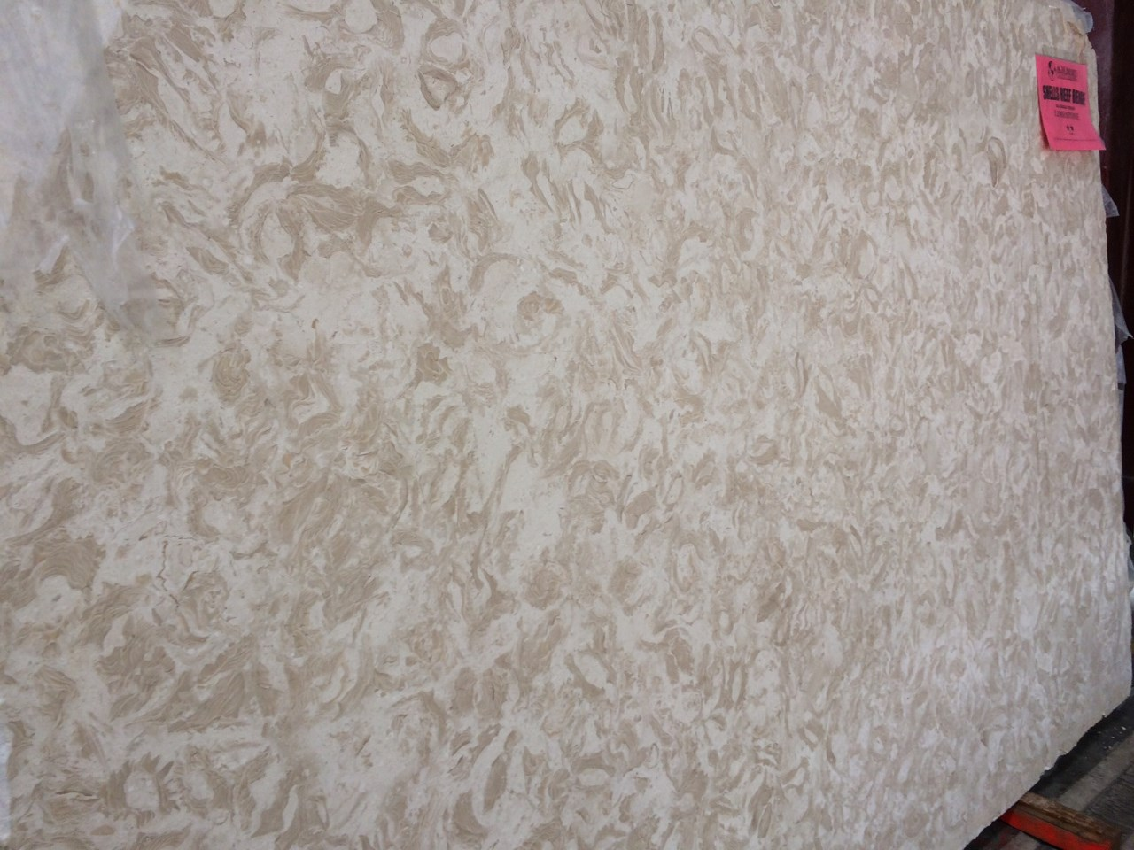 """Product Name: SHELLS REEF BEIGE LEATHER FF 3CMLot #: MED177 Avg. size: 105"""" X 69"""""""