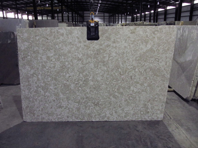 """Product Name: SHELLS REEF BEIGE POLISHED 3CMLot #: MED036 Avg. size: 107"""" X 66"""""""
