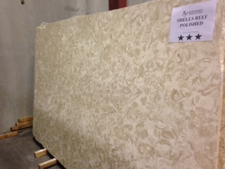 """Product Name: SHELLS REEF BEIGE POLISHED 3CMLot #: MED707 Avg. size: 111"""" X 67"""""""
